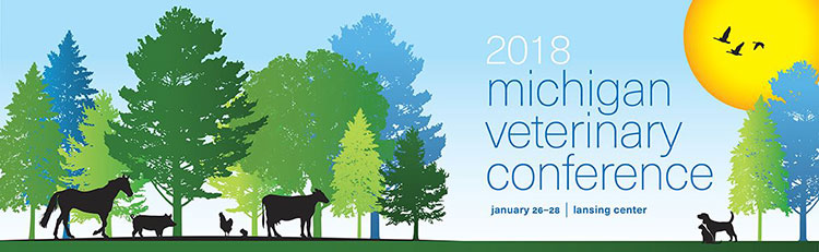 MVC2018-banner-web